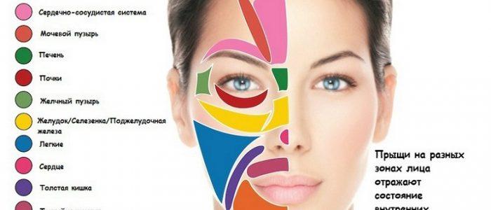 Прыщи на лице и заболевания внутренних органов: лечение
